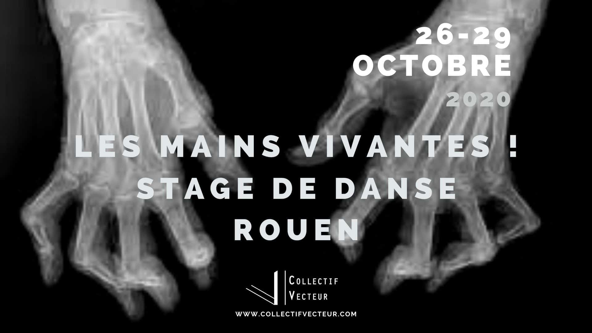 les mains vivantes remous collectif vecteur danse Rouen atelier stage