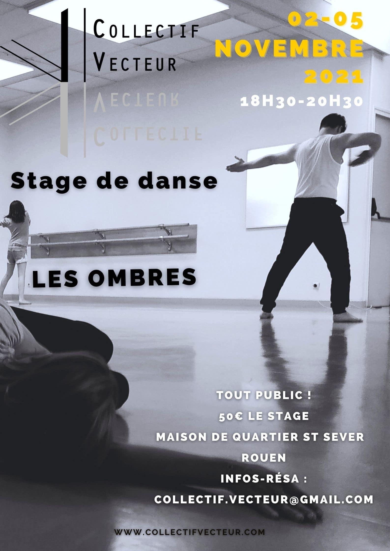 les ombres stage danse rouen collectif vecteur affiche remous